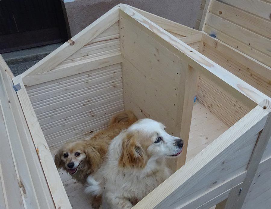 izdelava pasjih ut